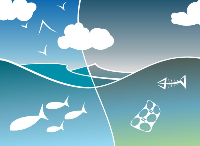 Umweltschutz Orthodentix