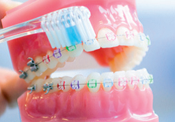 Zahnbuerste Brackets Orthodentix